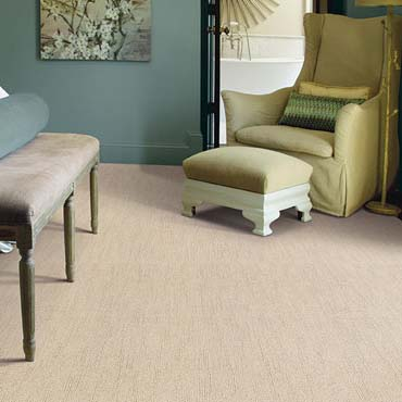 Caress Carpet by Shaw | Fitchburg, MA